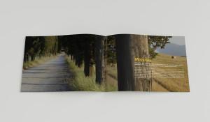 Interno 1 brochure